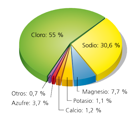Salada componentes de agua