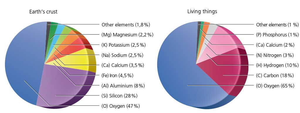 Percentage Of Chemical Elements That Form The Earths Crust And All Living Things