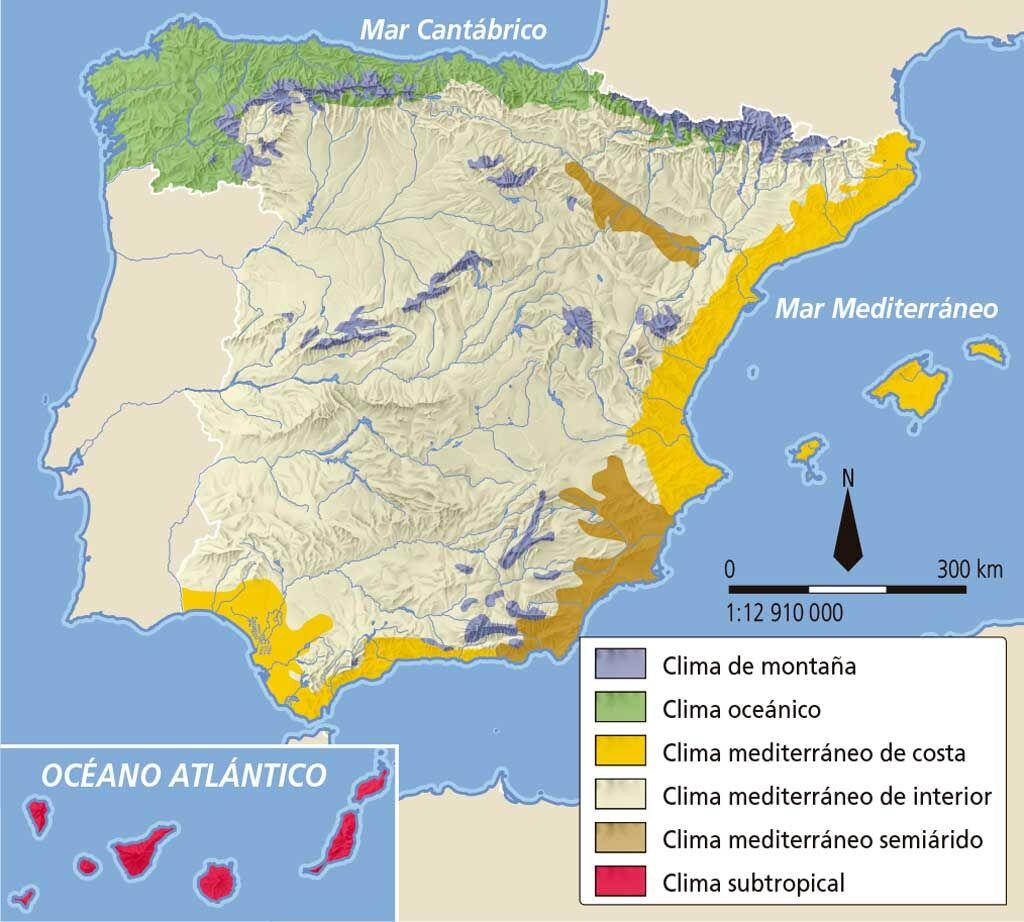Blink activity blinklearning for Clima mediterraneo de interior